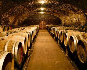 private-tours-wine-cellar.jpg